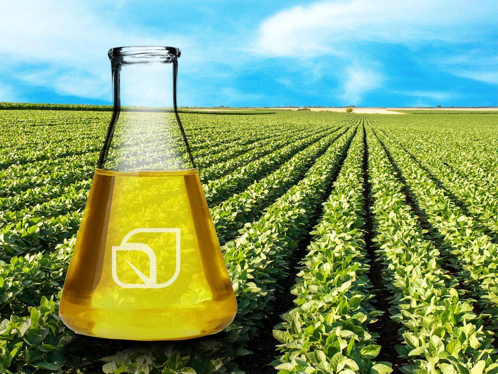 Erlenmeyer con biodiesel sobre campo de soja.